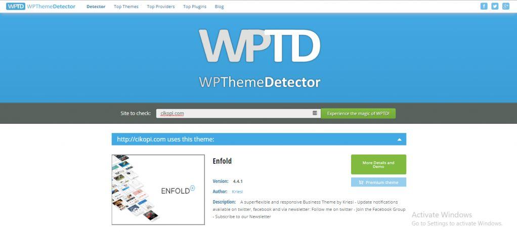 wp-theme-detector